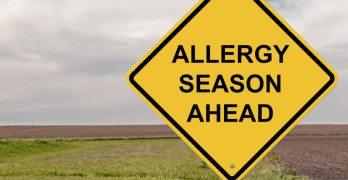 Allergia esetén hatékony kiegészítők