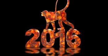 Mid fájhat 2016-ban?